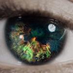wwf -occhio video promo